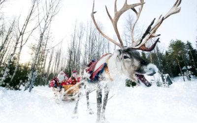Волшебный Новый Год в Деревне Александровка